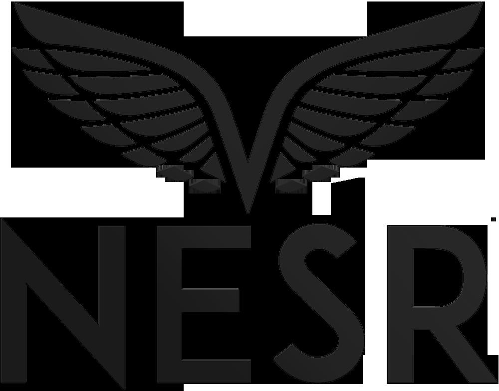 NESR | Wireline Logging Services